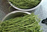 農村這種豆子採摘怎麼也吃不完,回家和媽媽一起變廢為寶