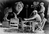 米高梅 商標中吼叫的獅子 拍攝時把馴獸師咬死?