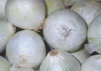白洋蔥和紫皮洋蔥的區別,不懂洋蔥都白吃了