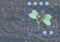 報告|剖析農產品B2B電商