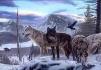 狼要吃羊……很短一個故事,卻看穿了許多人!