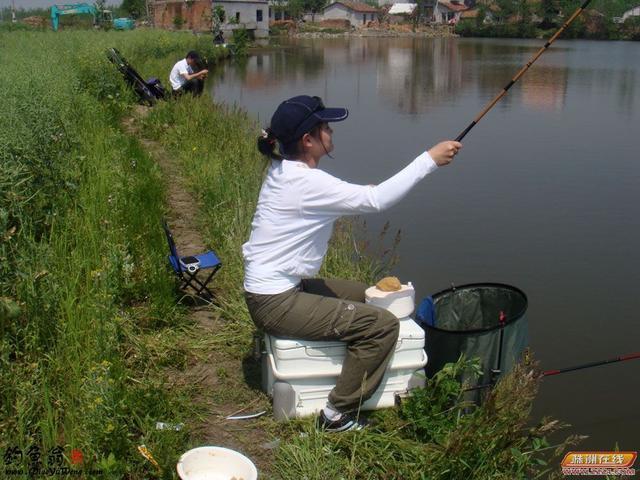 瞭解草魚的習性和掌握秋季草魚的覓食特點,讓你天天釣上大草魚