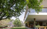 住宅設計:這個1788平的別墅豪宅有地下酒窖,還在客廳種了棵樹