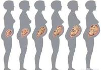 懷孕5個月肚子有這麼大,5個月胎兒本領大,對照一下達標了嗎?