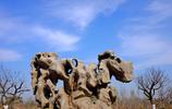 平陰瑪鋼石博園