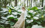 小智圖說-在樹林裡,站在滿是滴水觀音的大葉子前遊玩的女孩!