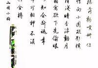 林逋《山園小梅》手寫鋼筆字筆友鋼筆書法習作欣賞