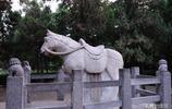 河南洛陽白馬寺:東漢時期漢明帝的一個夢,把佛教帶到了中國!