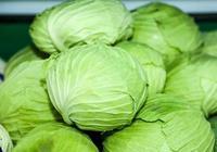 """這4種農村""""野菜"""",便宜好吃還營養,很少有城裡人全吃過"""