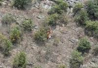 網曝瀘州一懸崖上發現屍體 警方:失蹤6月的男子