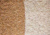 白米or糙米,看完你會明白哪種米更健康!
