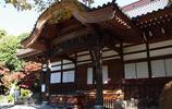日本之行,看日本風景,體驗日本文化