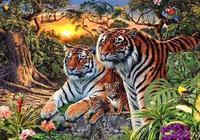 心理測試:老虎看到的越少代表你的城府越深