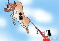 A股市場上分紅穩定增長的牛股知多少?
