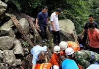 四川蘆山5名幼林撫育人員失聯 已找到4具遺體
