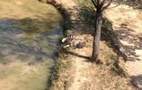 風景圖集;衡陽最美麗系列之衡陽動物園