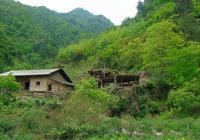 農村:農村深山的甜蜜生活