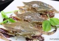 這19種海鮮,沒吃過會留遺憾,第19種,野生的一斤賣5000元以上