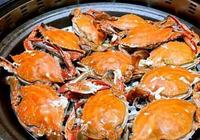 梭子蟹什麼時候最肥 梭子蟹什麼時候最好吃