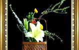 春之插花秀