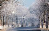 北京出現了霧凇景觀,網友直呼:驚豔,以後看霧凇不用去東北了