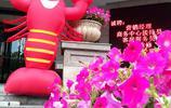 湖北宜昌:街拍拾趣 酒店擺放巨型小龍蝦 藥店打醫保招牌