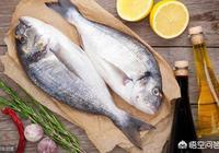 補腦吃什麼魚好?魚湯和魚肉哪個有營養?