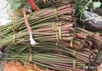 農村這些像柴火的藤條,農村人用來餵豬,城裡人卻吃得津津有味