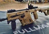單支價格是MP5的3到4倍 維克托因價格昂貴難以被制式裝備