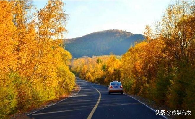秋日勝春朝:大興安嶺的秋色之美只要看一眼就會長在心裡