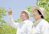 日本人為何壽命最長 歸功於五大祕訣