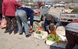 農村八旬老人賣秧苗,顧客善舉,大爺:你兜兒裡不一定比我塞得滿