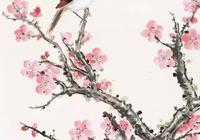 謝稚柳悅目賞心的30幅梅花!