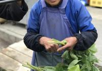羌族老農夫婦這樣賣花