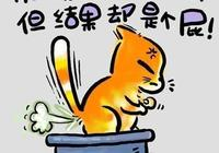 貓言貓語——喵星人的哲學漫畫(上集)