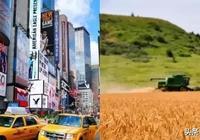 住在美國城市和農村,是怎樣截然不同的體驗?