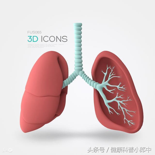 按摩穴位可保護肺臟,教您按摩4大穴位