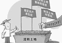 城市人買農村土地有什麼政策要求嗎?需要注意哪些問題呢?