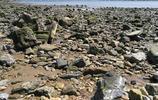 實拍大連黑石礁國家濱海地質公園,退潮後景色更絢麗,拍照勝地