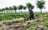 """新疆阿克蘇的孩子說,""""蘋果賣到的地方,我們也想去看一看"""