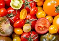 給孩子的有機食品該如何挑選?