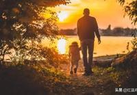父親的愛(散文)