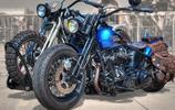 哈雷戴維森摩托車實在太好看