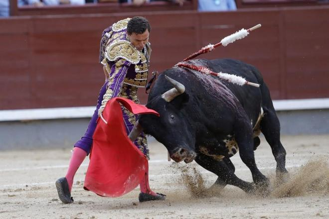 西班牙鬥牛士