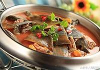 甲魚知識百科 甲魚的做法 甲魚怎麼殺 甲魚的營養價值