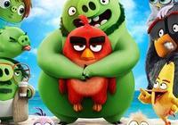 《憤怒的小鳥2》片段海報 搗蛋豬夜擾胖紅遭反殺