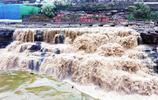世界第一大黃色瀑布 迎來金秋最佳觀賞期 又一次被母親河震撼到了