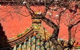 網上看世界,帶你來看看北京旅遊景點