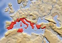 古羅馬領土的歷史變遷圖