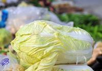 炒大白菜時,別急著倒油下鍋炒!用這小竅門,白菜美味又脆嫩